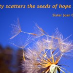 What Scatters the Seeds of Hope?