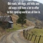Here's to Old Dogs!