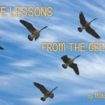 Five Lessons Learned From the Geese